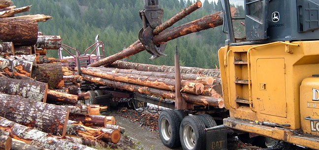 Logging truck loading logs at a Starket Forests site near Philomath, Oregon.
