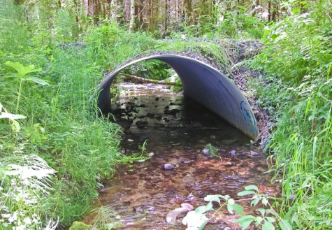 fish culvert