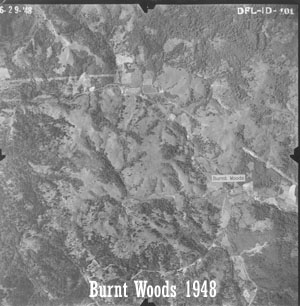 Aerial view of Starker Forests land near Burnt Woods, 1948