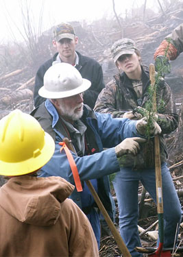 A forester talks to a group of planters at Tree Planting Day 2011, sponsored by Starker Forests in Philomath, Oregon.