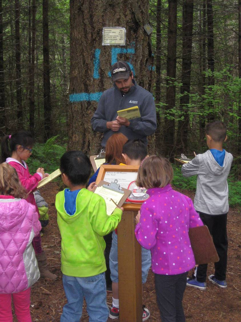 Over 1000 students per year come to our interpretive trail to learn about trees and forests.